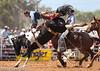 20130310_Arcadia Rodeo-9