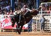 20130310_Arcadia Rodeo-12