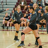 The Lady Warriors celebrate another point against the Lady Berries in volleyball action at Winamac on Thursday night. Fran Ruchalski | Pharos-Tribune