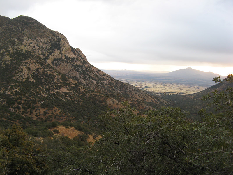 Beautiful vistas in Mearns quail country.