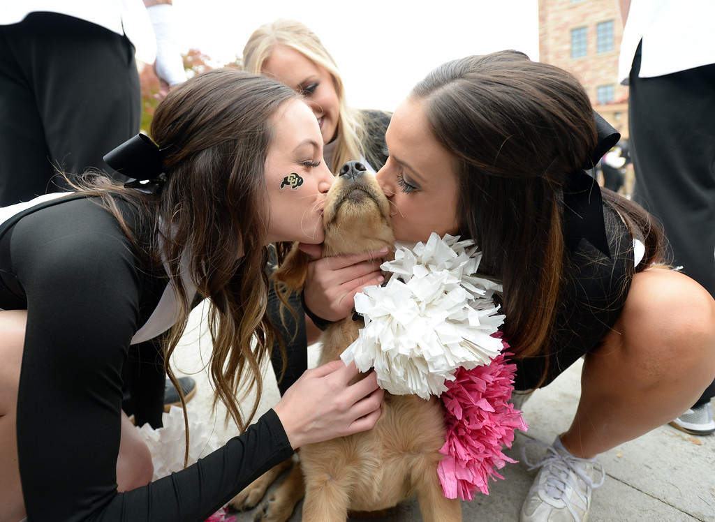 . BOULDER, CO: October 6, 2018:  Cute puppy gets kisses from the CU Spirit Squad before the game with Arizona State on October 6, 2018. (Photo by Cliff Grassmick/Staff Photographer)