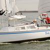 AYC 2014 Cat 22 Regatta-1410