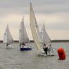 AYC 2014 Cat 22 Regatta-1376