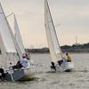 AYC 2014 Cat 22 Regatta-1373