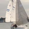 AYC 2014 Cat 22 Regatta-1404