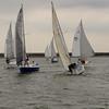 AYC 2014 Cat 22 Regatta-1378