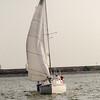 AYC 2014 Cat 22 Regatta-1327
