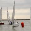 AYC 2014 Cat 22 Regatta-1381