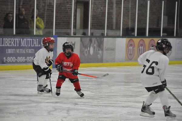 Armory Mite Hockey