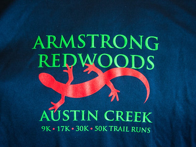 Armstrong Redwoods Race 2014