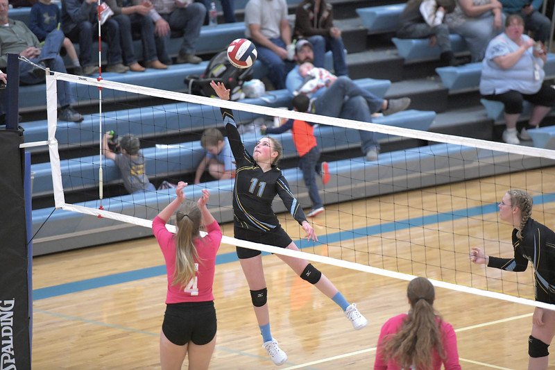 Matthew Gaston | The Sheridan Press<br>Arvada-Clearmont's Shelby Fennema (11) elevates for the spike against the Lady Red Devils Saturday, Oct. 26, 2019.
