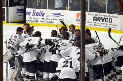 2013 Hockey Michigan