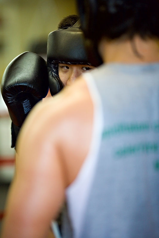 <h3>Sparring</h3>  15 February 2006