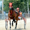 Newton's JD Finn drives Captain Greedy toward the halfway mark on his way to victory during the Big 10 2-Year-Old colt trot, the second race of the day at the Effingham County Fair's harness racing.