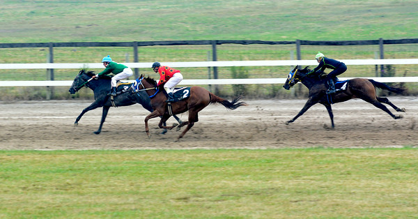 Shane Collins leads Jorge Collazo Sr. and Jorge Collazo Jr. on the back straightaway during the second race of the thoroughbred racing championship.