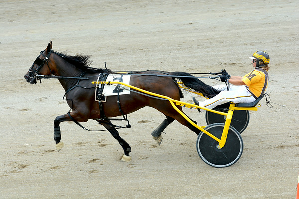 Darla Martin rides At Risk to a win in the ICF Maiden Trot race during the Effingham County Fair's harness racing, one of her two wins on the day. Martin took over the driving champion standings lead with two wins and a second-place finish.
