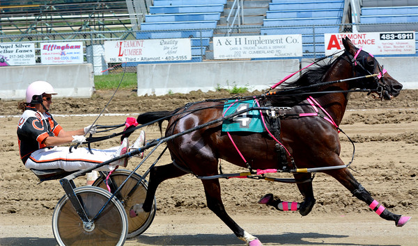 Altamont's Pamela Coleman drives Josting Jack to victory in the Effingham County Fair Amateur Driving Race. It was Coleman's first race in four years, and Coleman is a breast cancer survivor after nearly dying in February.