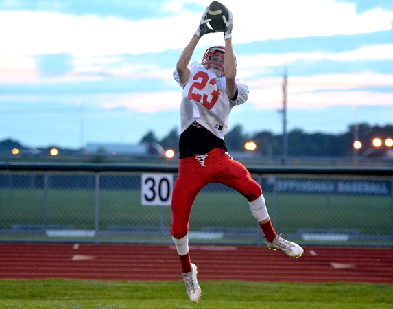 Effingham's Logan Poe jumps up and reins in a pass during the Buck Bowl.