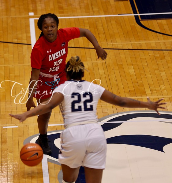 2017 APSU WBB at Butler - 54.jpg