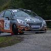 Rallye des Bauges 2013