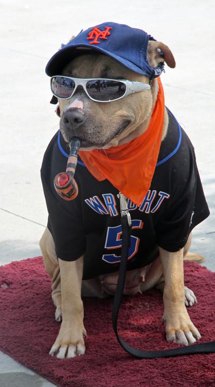 BASEBALL PARKS - citi FIELD - NEW YORK METS