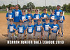 HJBL2013_ShelterInsurance-5x7