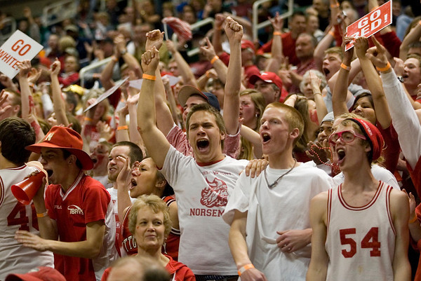 Record-Eagle/Jan-Michael Stump<br /> Suttons Bay fans react after Dwuan Anderson's dunk on Bridgman in the state semifinal game Thursday at the Breslin Center in East Lansing.