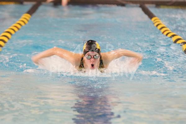 BHS Girls Swimming 2013-14