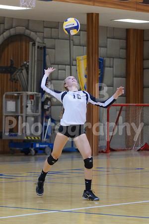 BHS Varsity Volleyball 2013-2014