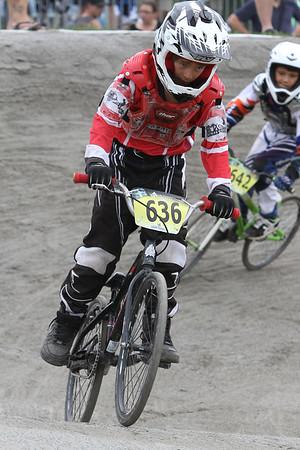 BMX_GAT1790
