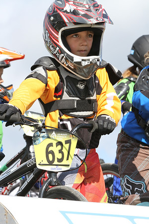 BMX15_SJ0008