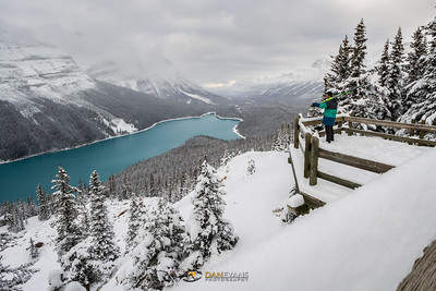 'Surveyor' - skiing takes me to some of my favourite places on earth, and an open Peyto lake with fresh snow is up there with the best.