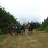20080830_backpacking_monroe_skyline_labor_day_DSC_0187