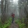 20080628_dtepper_bond_mtn_backpack_trip_DSC_0053