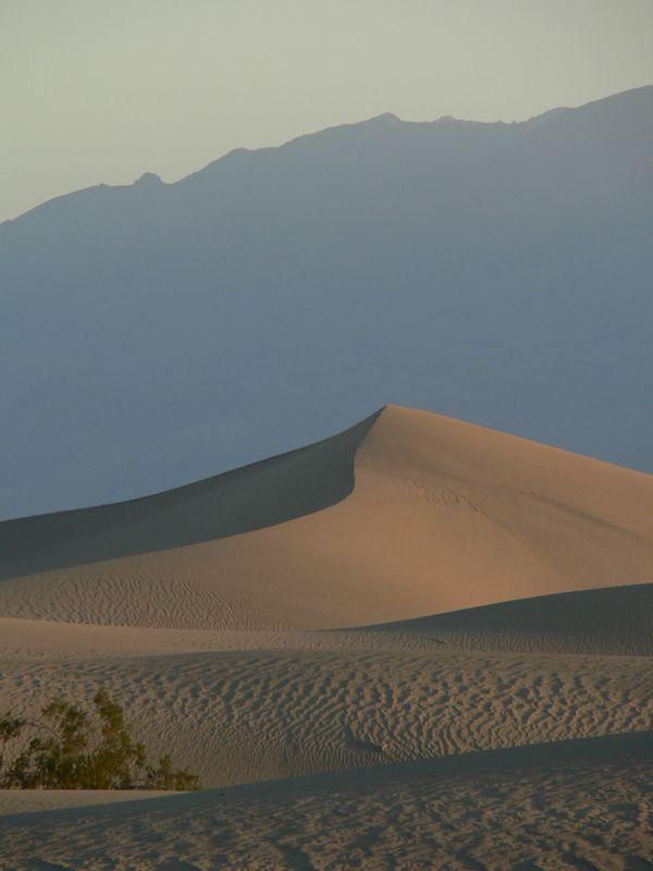 Sand dunes the morning of the race start.