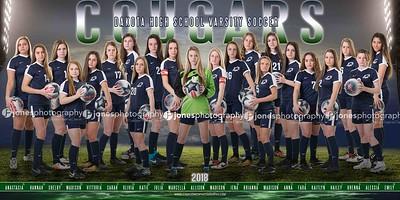 DHS Girls Varsity Soccer 2018 copy