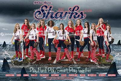 Sharks 11u 2017