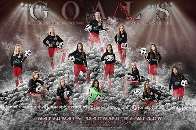 NM07GB 12x18 Goals Poster copy