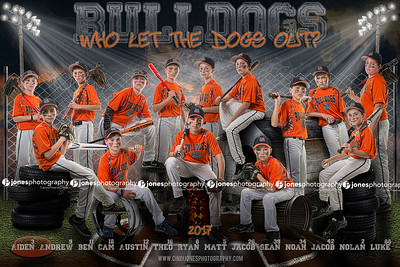 Bulldogs 2017 2