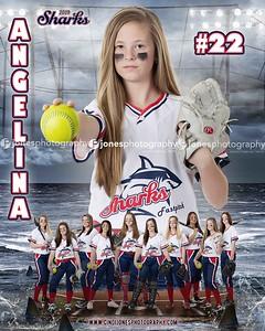 Angelina Sharks 14u 2019 Door Sign