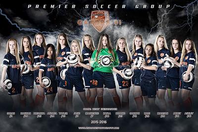 Soccer Banner, Soccer Poster, Soccer Team
