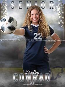 Shelby Dakota Senior Banner 2019