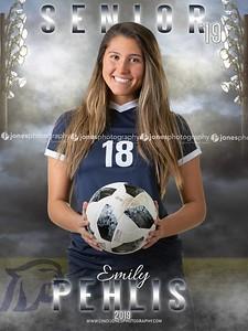 Emily Dakota Senior Banner 2019
