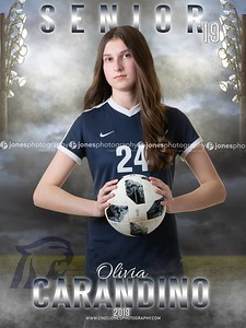 Olivia Dakota Senior Banner 2019
