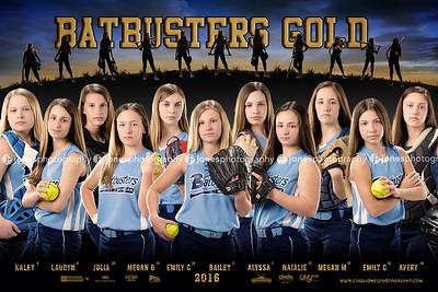 Softball Banner, Baseball Banner