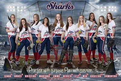 Sharks 14u 2019