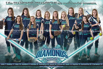 Grosse Pointe Diamonds 12u 2018 2