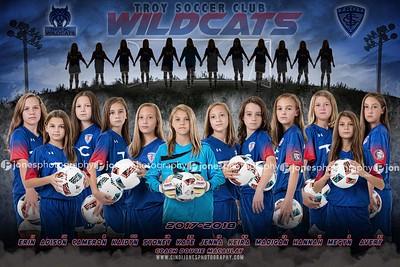 TSC Wildcats Banner Poster 2017 Banner