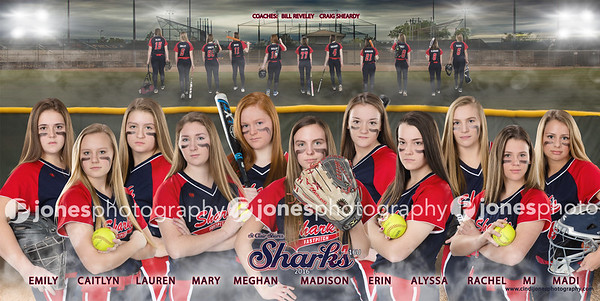 Team_Banner_Sports_Team_Banner_Softball_Baseball_Cindi Jones_Jones Photography_Poster_Picture_Composite