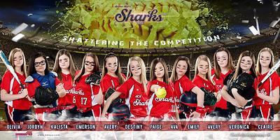 Shattered Sharks 2016 BannerBETTER BALL copy